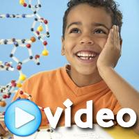 Bilim Eğlencelidir: Kan Dolaşımı Oyunu